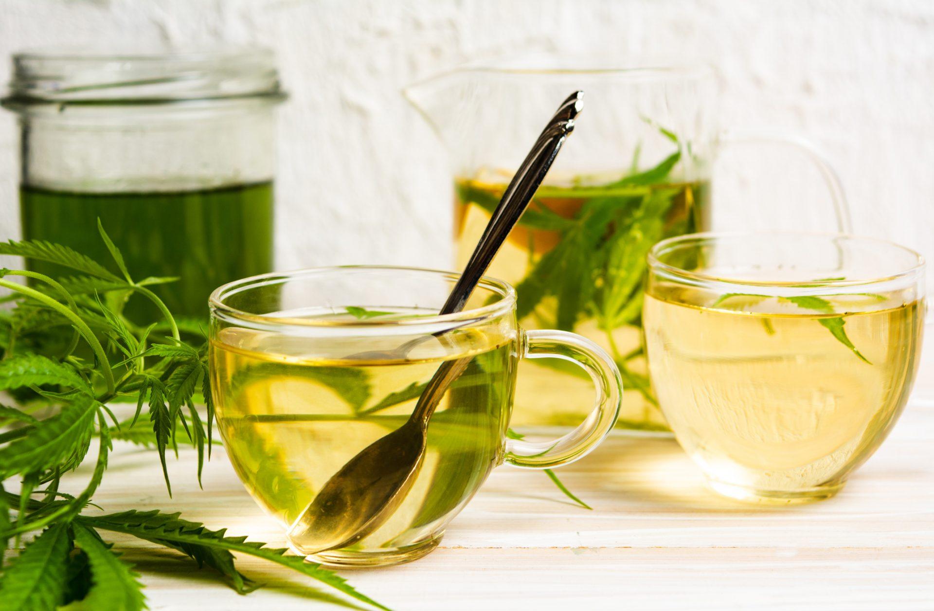 Making Cannabis Tea