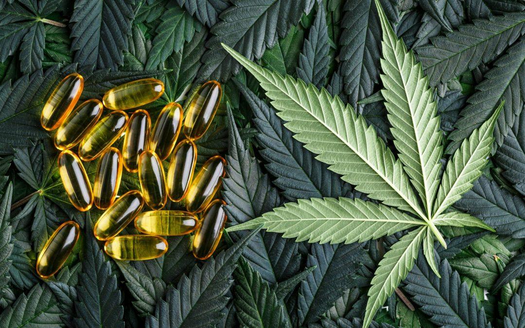 To Smoke Or Not To Smoke – Cannabis Capsules
