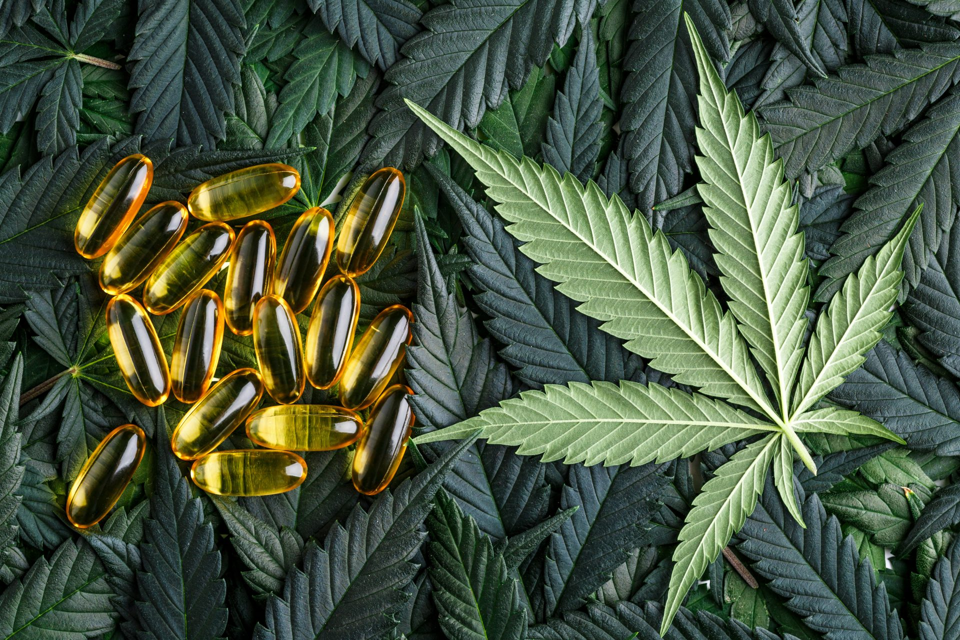 THC Capsules and Cannabis Leaf